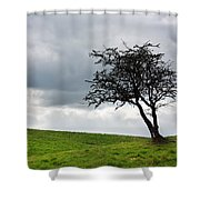 Leafless  Shower Curtain by Semmick Photo