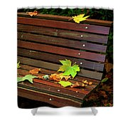 Leafs In Bench Shower Curtain by Carlos Caetano