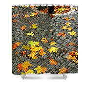 Leafs in Ground Shower Curtain by Carlos Caetano