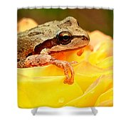 Life In The Rose Shower Curtain by Jean Noren