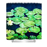 Lily Pads And Lotus Shower Curtain by Tammy Wetzel