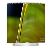 Lime Abstract Shower Curtain by Dana Kern