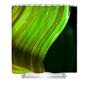 Lime Curl Shower Curtain by Dana Kern