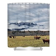 Livingstone Range And Pastureland Shower Curtain by Darwin Wiggett