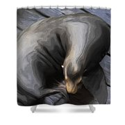 Lone Sea Lion Shower Curtain by Jack Zulli