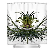 Love In A Mist Shower Curtain by Jean Noren