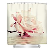 Lucid Shower Curtain by Priska Wettstein