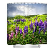 Lupin Flowers In Newfoundland Shower Curtain by Elena Elisseeva