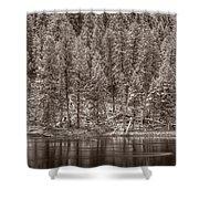 Madison River Yellowstone Bw Shower Curtain by Steve Gadomski