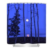 May Moon Through Birches Shower Curtain by Francine Frank