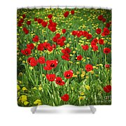 Meadow With Tulips Shower Curtain by Elena Elisseeva