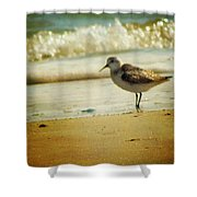 Memories Of Summer Shower Curtain by Amy Tyler