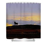 Mi Espana - Yo Te Quiero Shower Curtain by Juergen Weiss