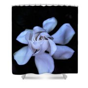 Midnight Gardenia Shower Curtain by Judi Bagwell