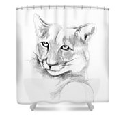 Missouri Mountain Lion  Shower Curtain by Kip DeVore