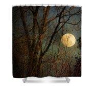 Moonrise Shower Curtain by Jai Johnson