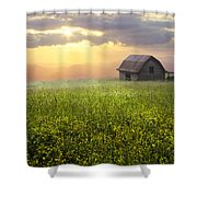 Morning Has Broken Shower Curtain by Debra and Dave Vanderlaan