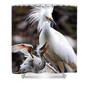Mother And Child Shower Curtain by Kenneth Albin