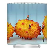Mountain Climber On Mangosteens II Shower Curtain by Paul Ge