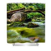 Mountain Stream Shower Curtain by Christopher Holmes