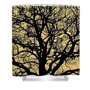 My Friend - The Tree ... Shower Curtain by Juergen Weiss