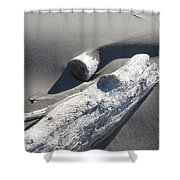Nature Coastal Art Prints Driftwood Sand Dunes Shower Curtain by Baslee Troutman