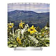 Nature Dance Shower Curtain by Janie Johnson
