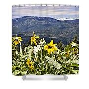 Nature Dance Shower Curtain by Janie Johnson