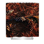 Needles Cones And Oak Leaf Shower Curtain by Larry Ricker