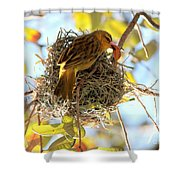 Nesting Instinct Shower Curtain by Carol Groenen