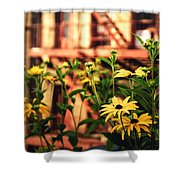 New York City Flowers Along The High Line Park Shower Curtain by Vivienne Gucwa