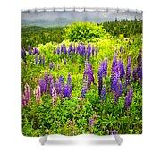 Newfoundland Meadow Shower Curtain by Elena Elisseeva