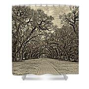 Oak Alley 3 Antique Sepia Shower Curtain by Steve Harrington
