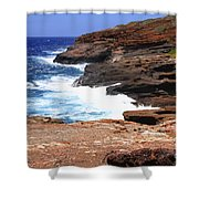 Oceans Beauty Shower Curtain by Cheryl Young