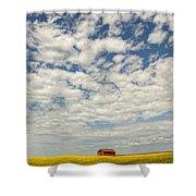 Old Abandoned Red Barn In The Midst Shower Curtain by Robert Postma