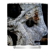 Old Ancient Olive Tree In Spain Shower Curtain by Colette V Hera  Guggenheim