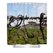 Old And New  Shower Curtain by Lainie Wrightson