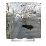 On The River. Heart In Ice 02 Shower Curtain by Ausra Paulauskaite