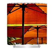 Orange Sliced Umbrellas Shower Curtain by Karen Wiles
