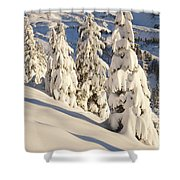 Oregon, United States Of America Snow Shower Curtain by Craig Tuttle