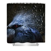 Ornamental Nature Shower Curtain by Andrew Paranavitana