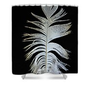 Owl Clothes Shower Curtain by Jean Noren