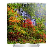 Painted Autumn Shower Curtain by Carolyn Wright
