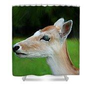 Painted Deer Shower Curtain by Mariola Bitner