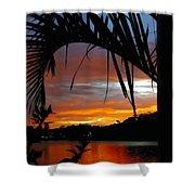 Palm Framed Sunset Shower Curtain by Kaye Menner