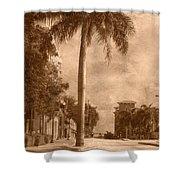 Palm Tree Shower Curtain by Trish Tritz