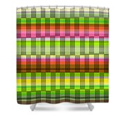 Party Stripe Shower Curtain by Louisa Knight