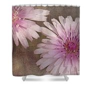 Pastel Pink Passion Shower Curtain by Benanne Stiens
