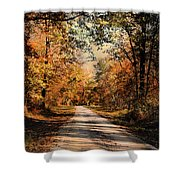 Path To Nowhere Shower Curtain by Jai Johnson