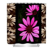 Petal Collage Shower Curtain by Cheryl Young